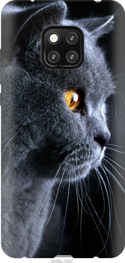 Чехол на Xiaomi Poco X3 Красивый кот