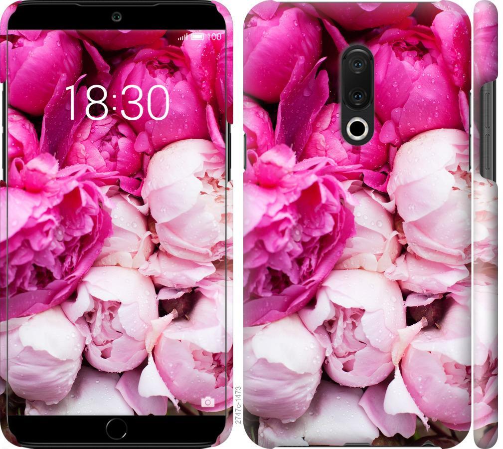 Чехол на Meizu 15 Plus Розовые пионы