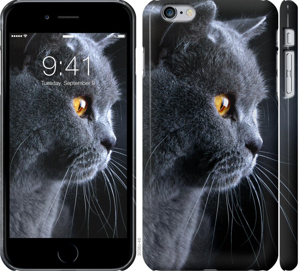 Чохол на iPhone 6 Plus Гарний кіт