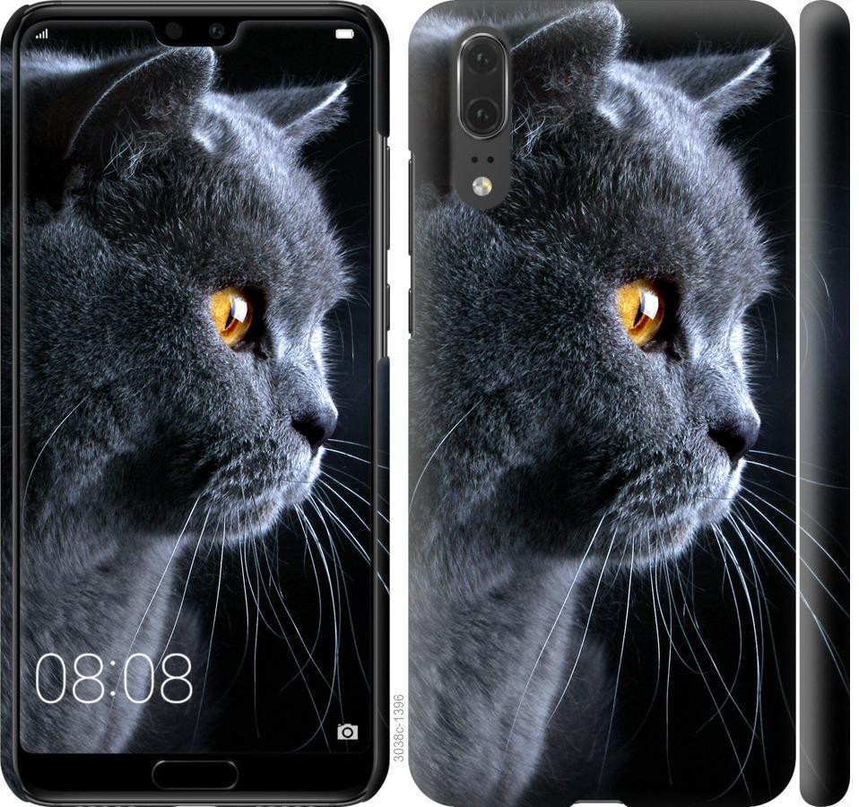 Чехол на Huawei P20 Красивый кот