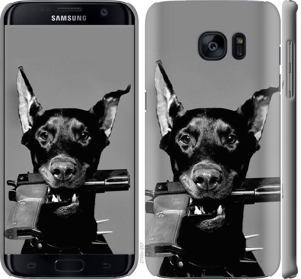 Чехол на Samsung Galaxy S7 Edge G935F Доберман