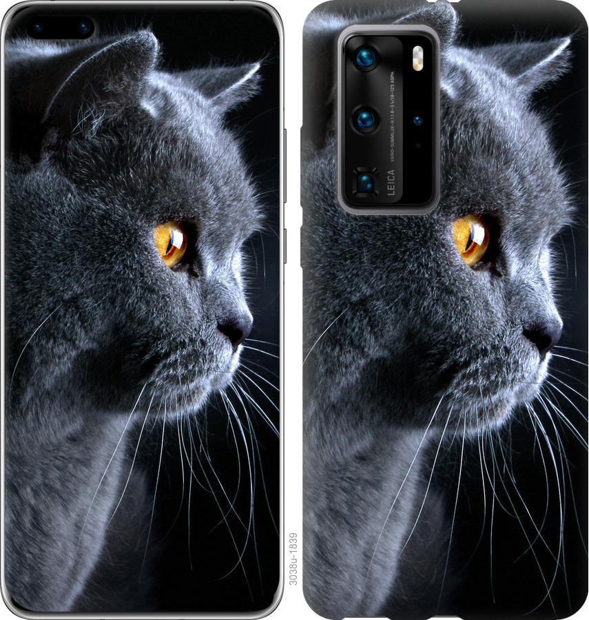 Чехол на Huawei P40 Pro Красивый кот