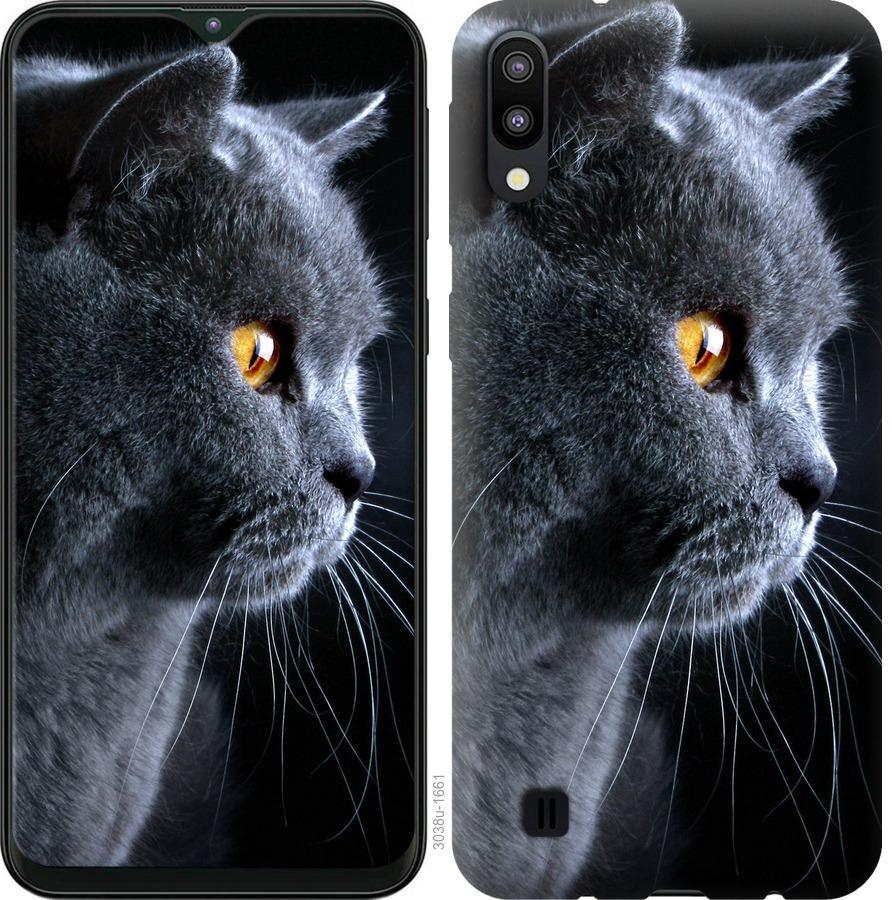 Чехол на Samsung Galaxy A2 Core A260F Красивый кот
