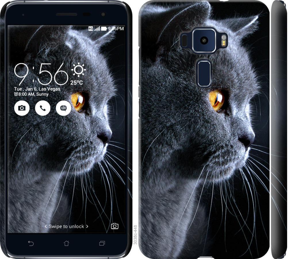 Чехол на Asus Zenfone 3 ZE552KL Красивый кот