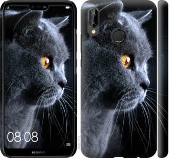 Чехол на Huawei P20 Lite Красивый кот