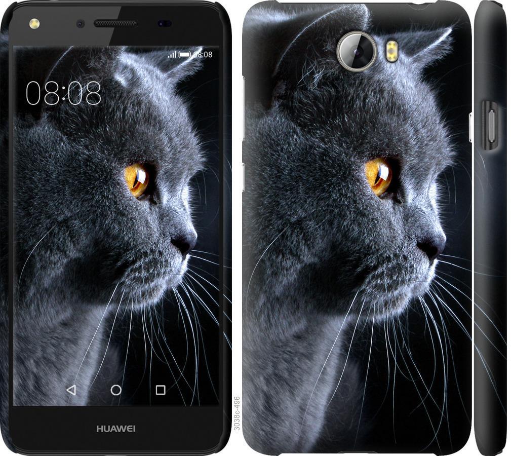 Чехол на Huawei Y5 II Красивый кот