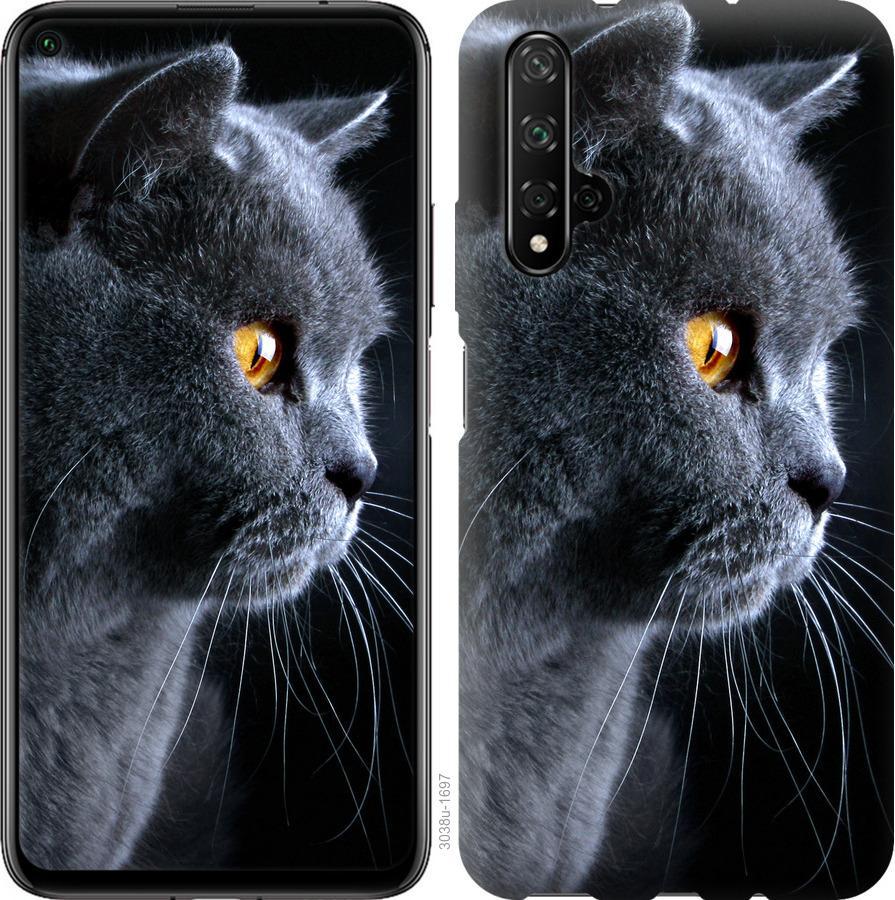 Чехол на Realme X50 Красивый кот