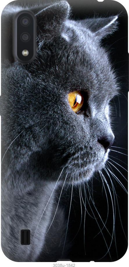 Чехол на ZTE Blade A7 2020 Красивый кот