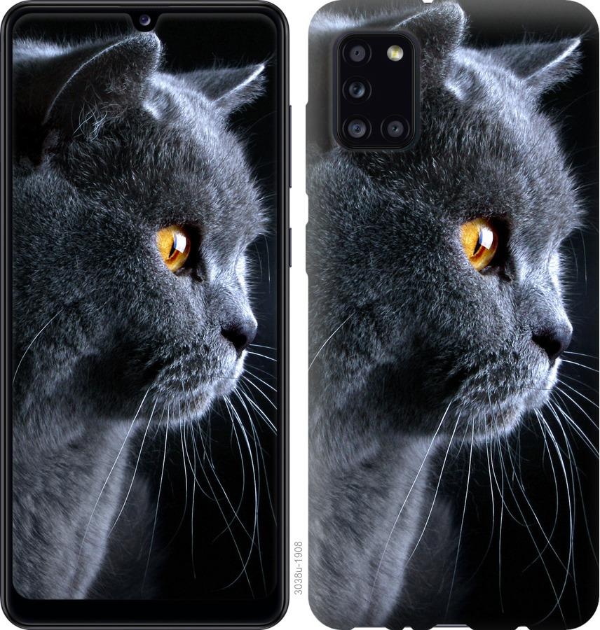 Чехол на Huawei Y5p Красивый кот