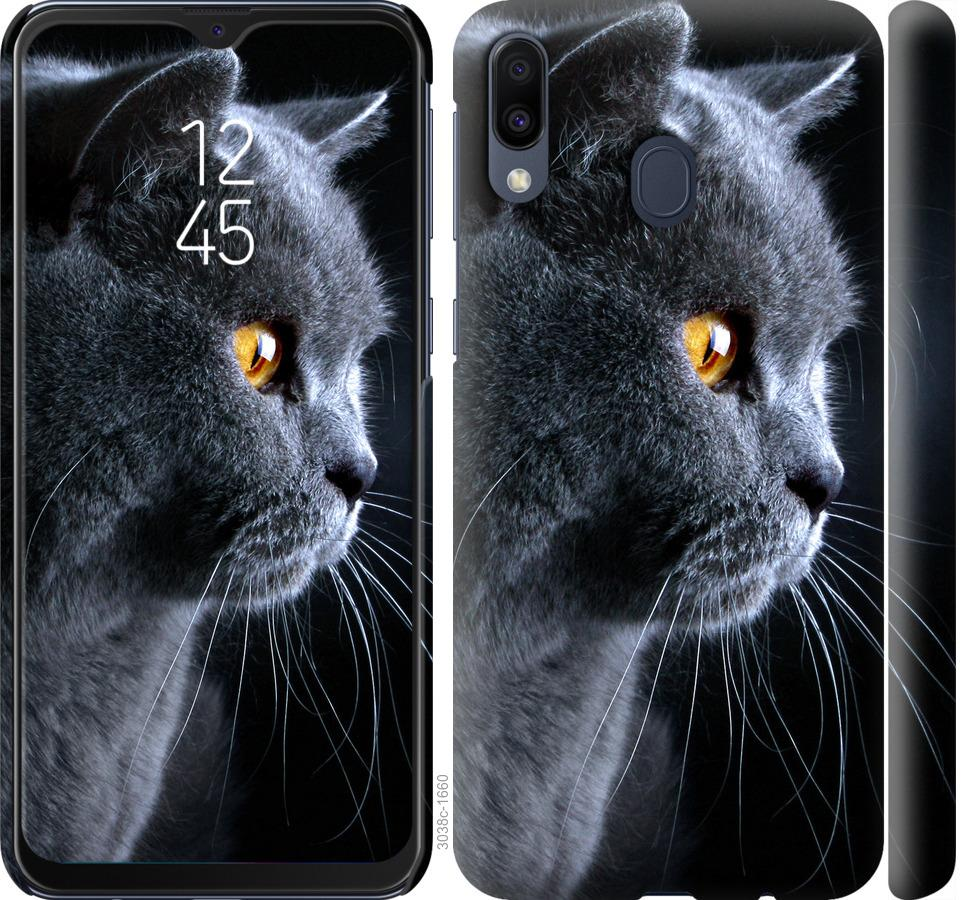 Чехол на Samsung Galaxy M20 Красивый кот