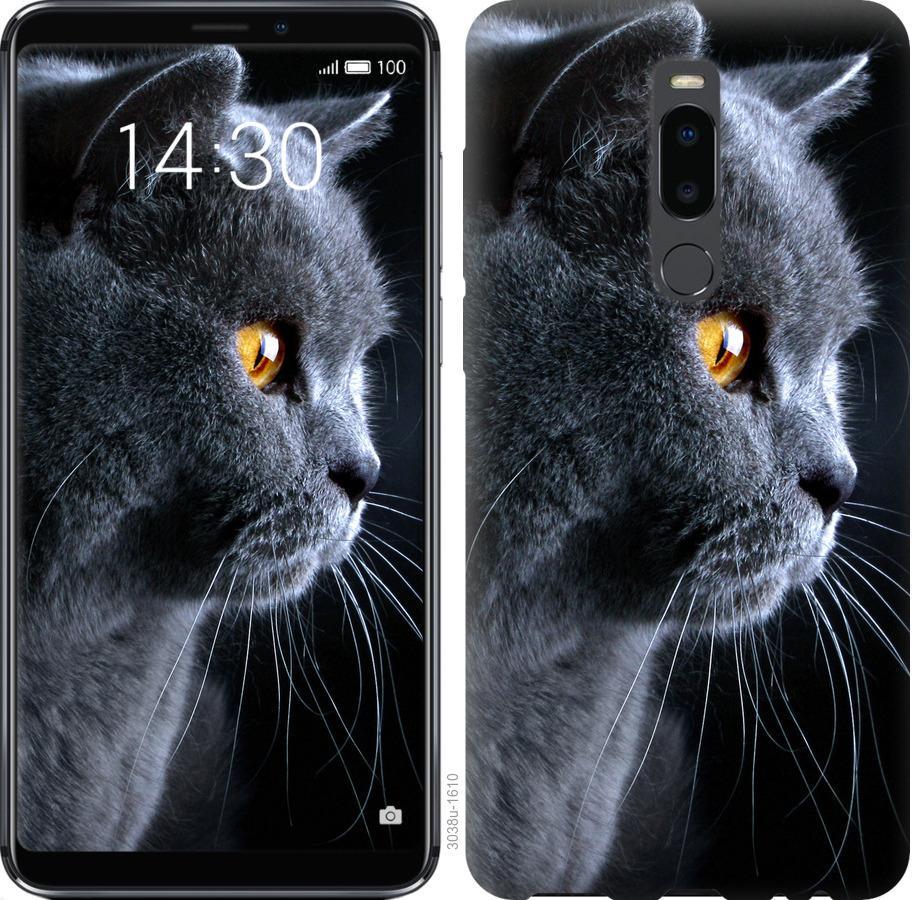 Чохол на Meizu Note 8 Гарний кіт