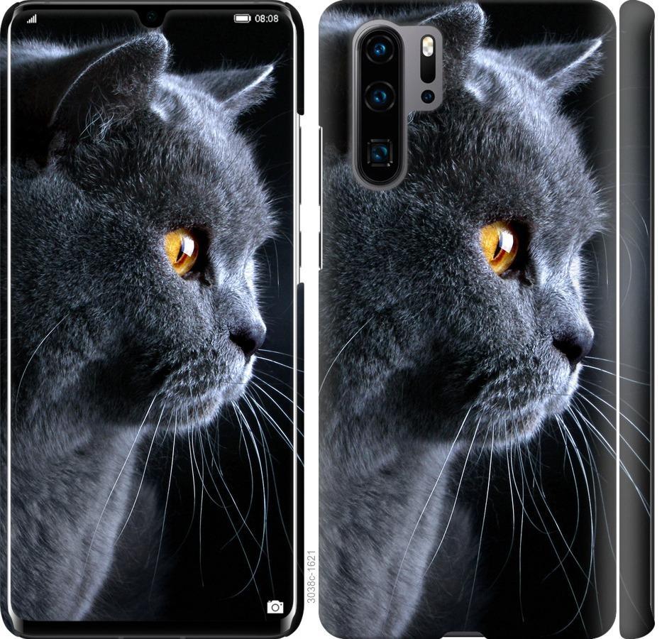 Чехол на Huawei P30 Pro Красивый кот