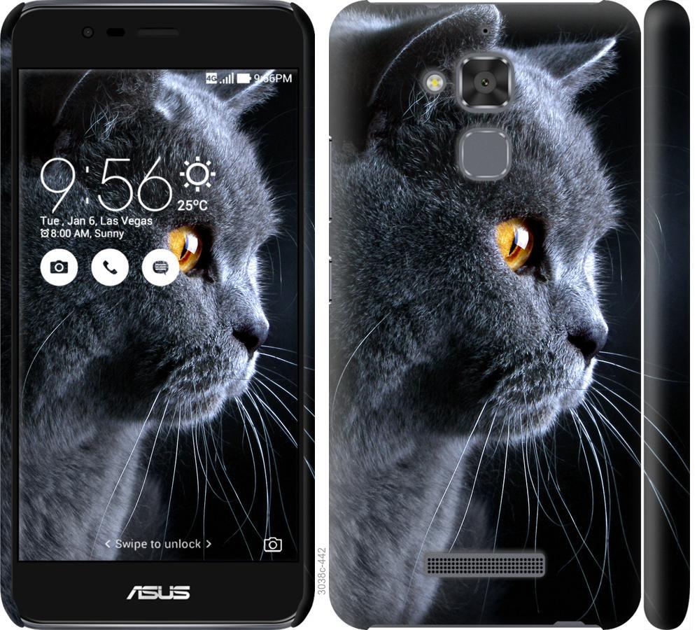 Чохол на Asus Zenfone 3 Max ZC520TL Гарний кіт