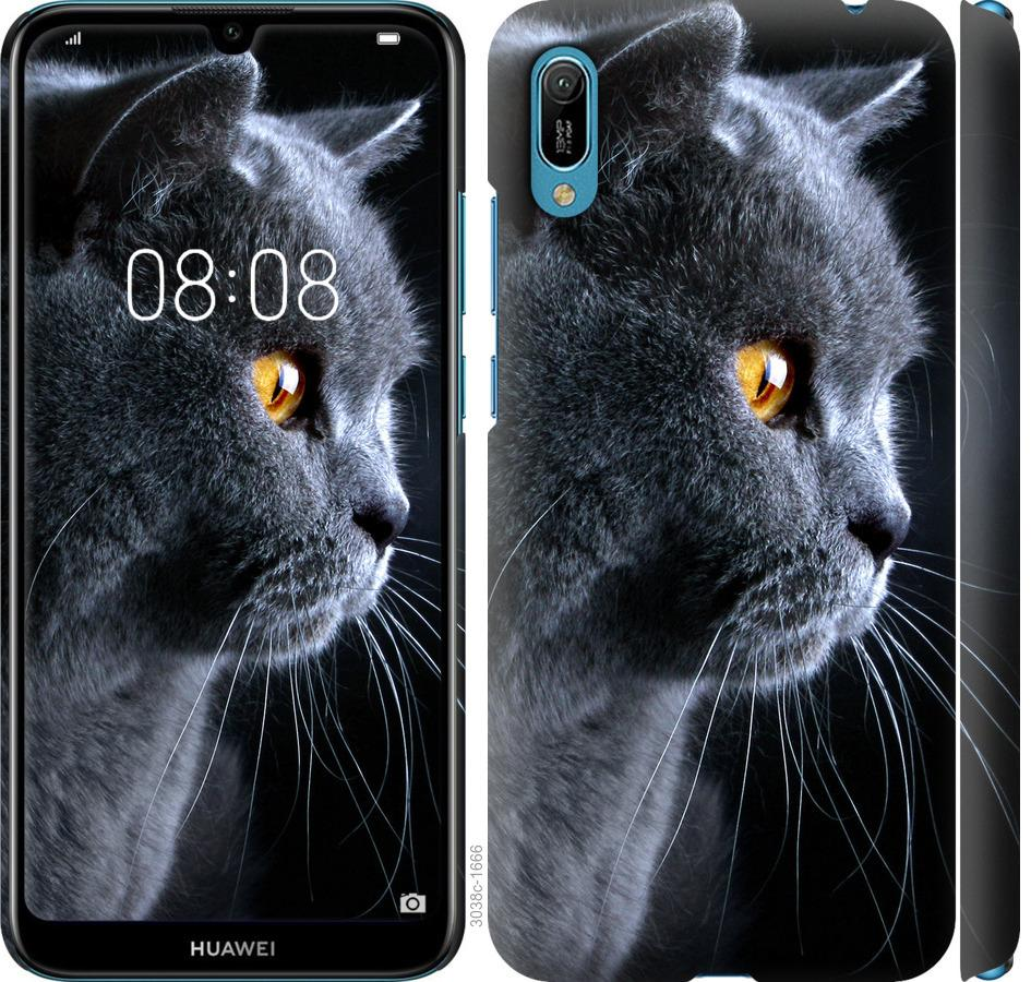Чехол на Huawei Y6 2019 Красивый кот