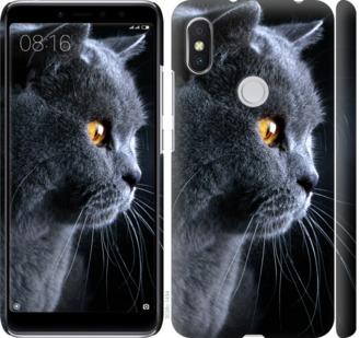 Чехол на Xiaomi Redmi S2 Красивый кот