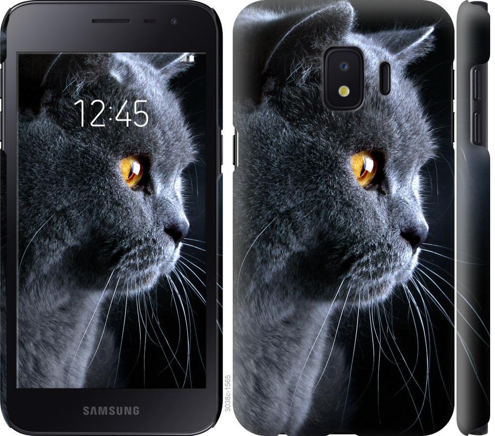 Чехол на Samsung Galaxy J2 Core Красивый кот