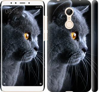 Чехол на Xiaomi Redmi 5 Красивый кот