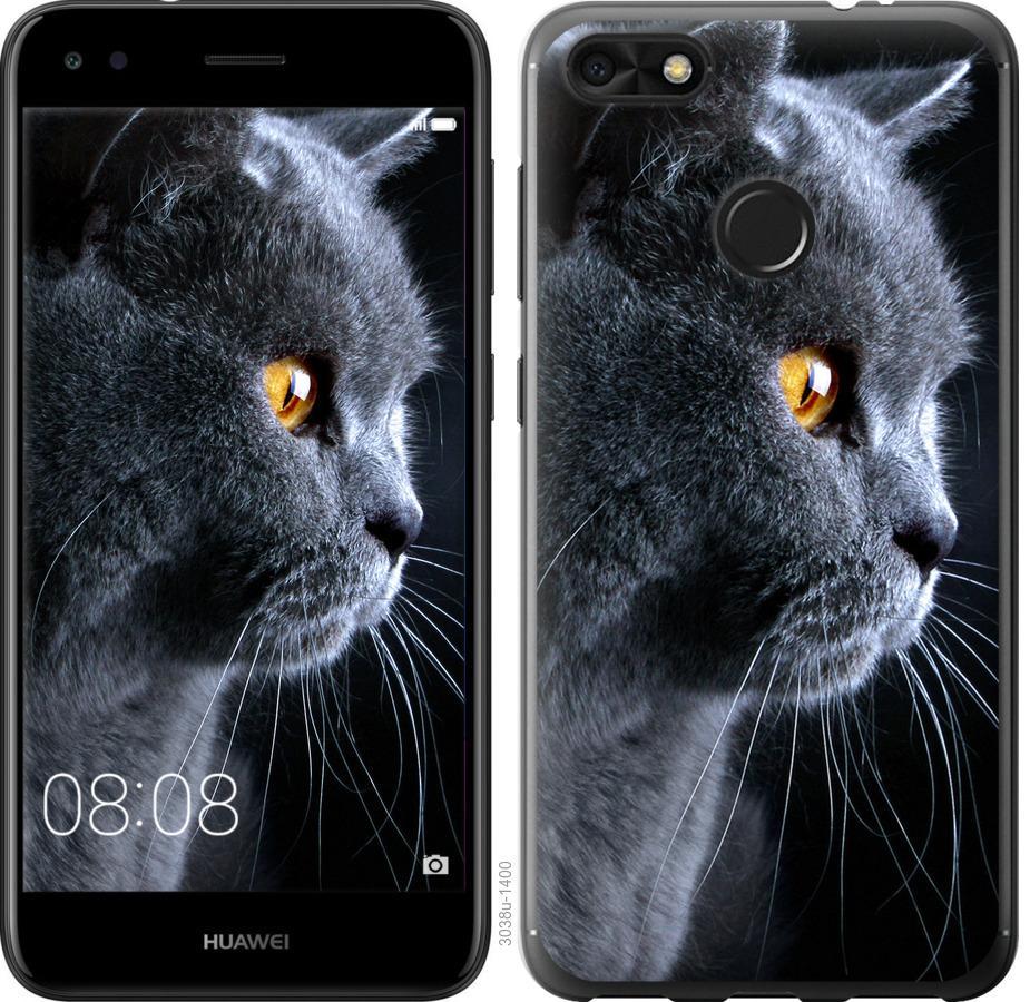 Чехол на Huawei Nova Lite 2017 Красивый кот