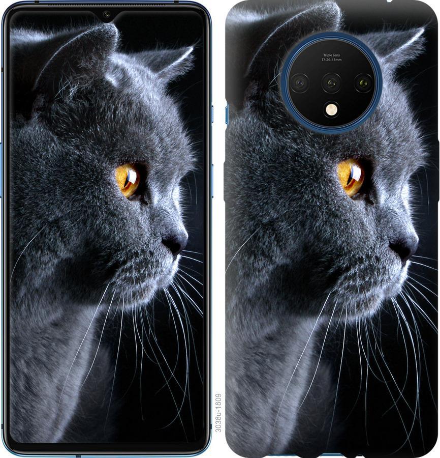 Чохол на OnePlus 7T Гарний кіт