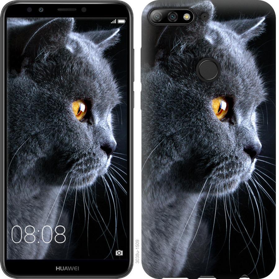 Чехол на Huawei Honor 7C Красивый кот