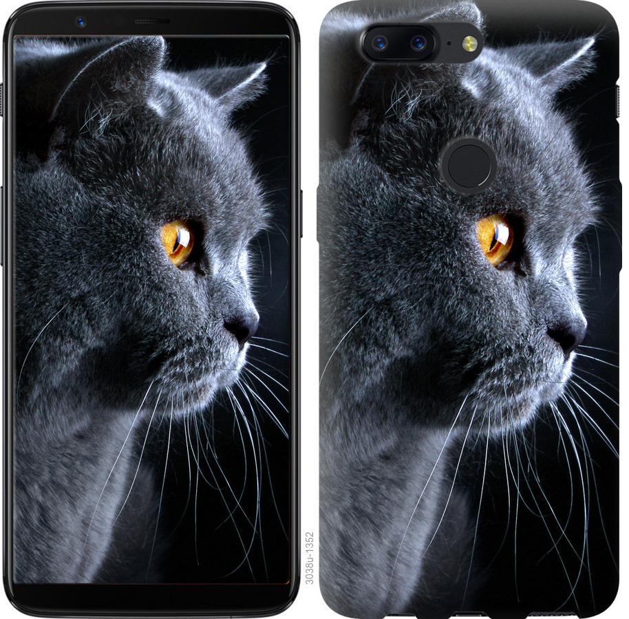 Чехол на OnePlus 5T Красивый кот