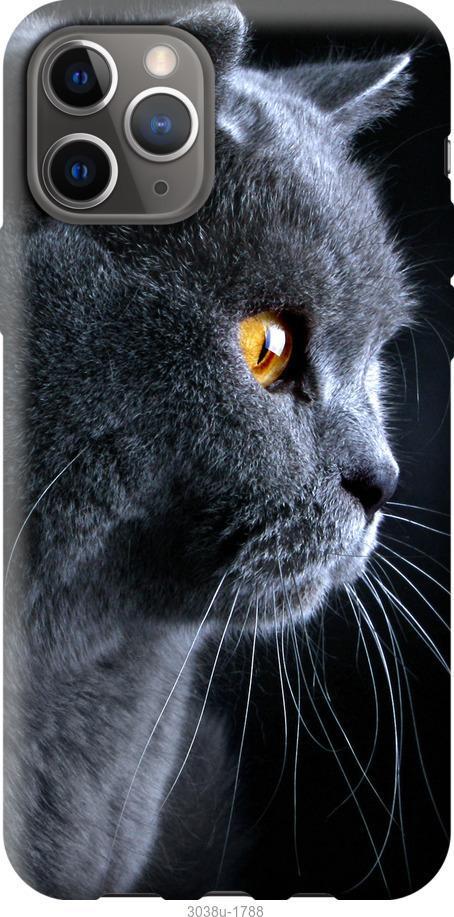 Чехол на Google Pixel 4 Красивый кот