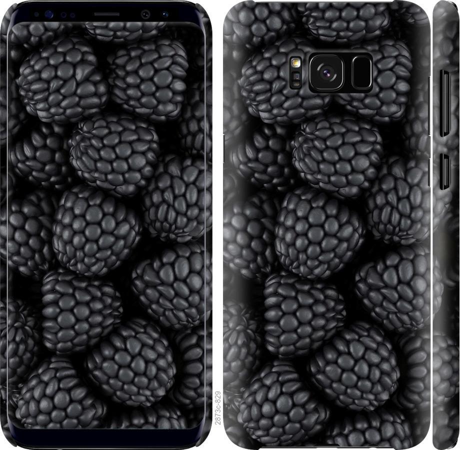 Чехол на Samsung Galaxy S8 Черная ежевика