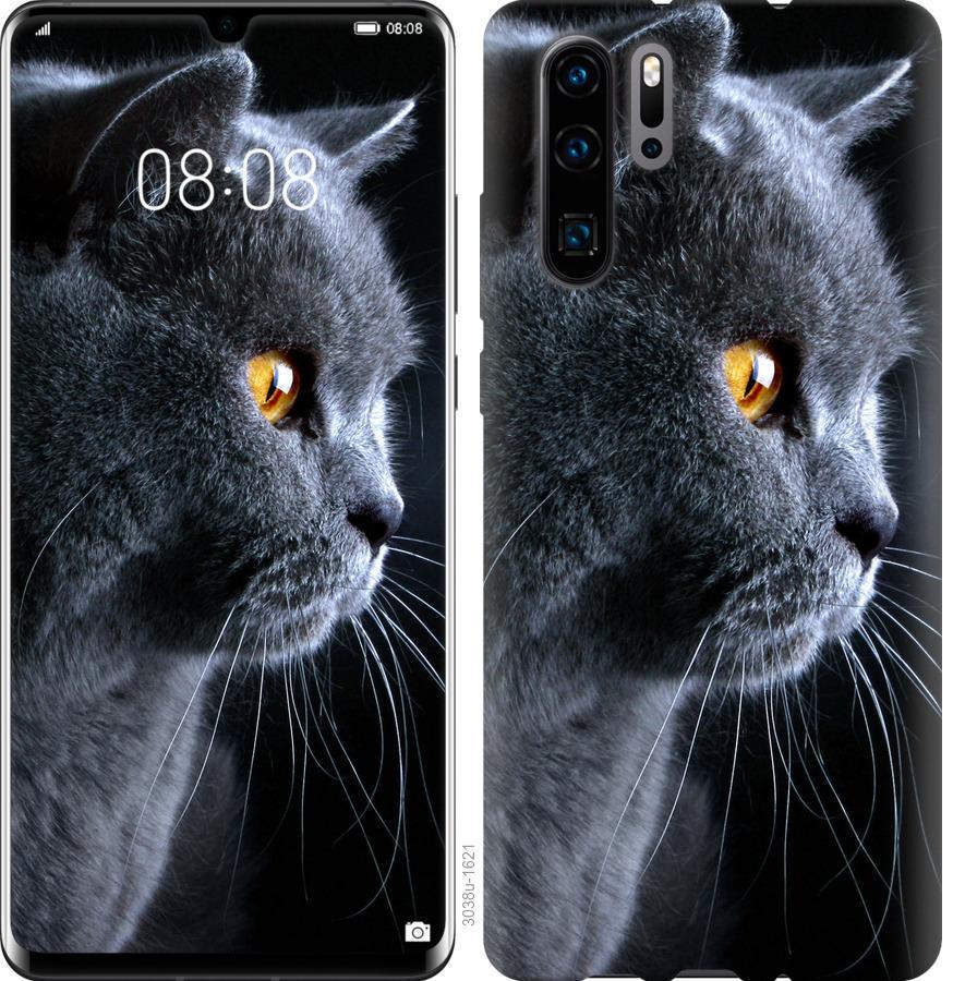 Чехол на Huawei Nova 6SE Красивый кот