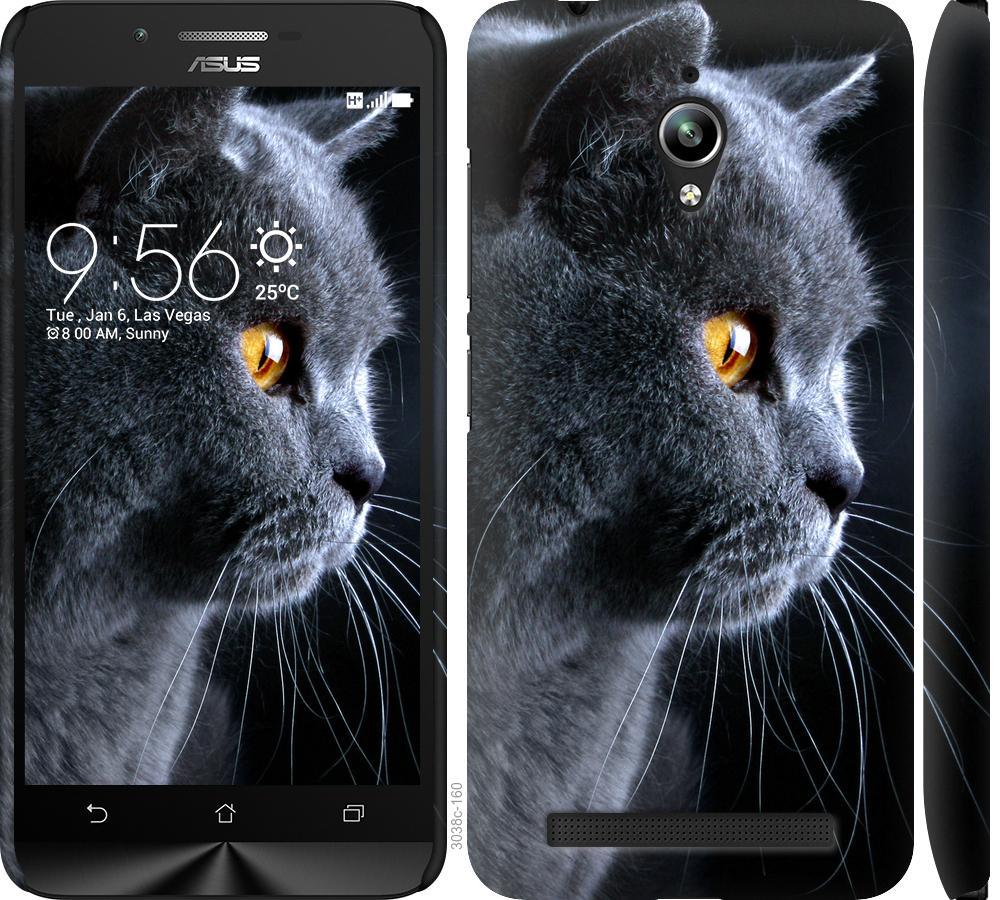 Чехол на Asus Zenfone Go ZC500TG Красивый кот