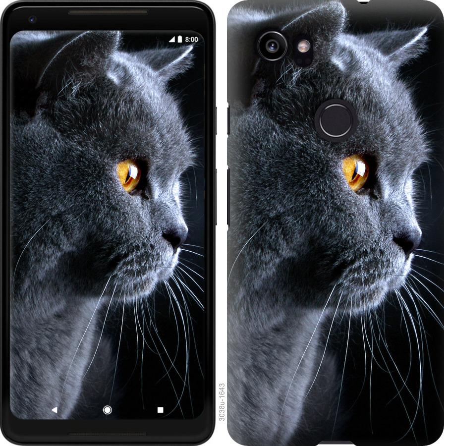 Чехол на Google PixeL 2 XL Красивый кот