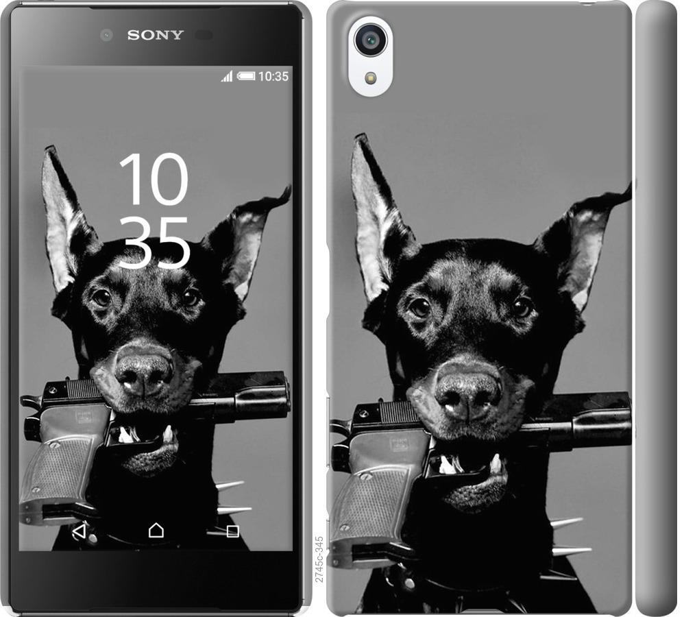 Чехол на Sony Xperia Z5 Premium E6883 Доберман