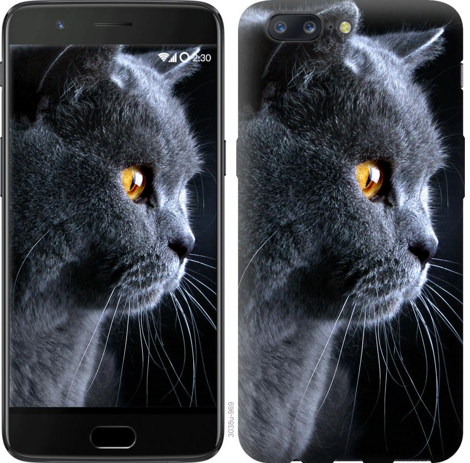Чехол на OnePlus 5 Красивый кот