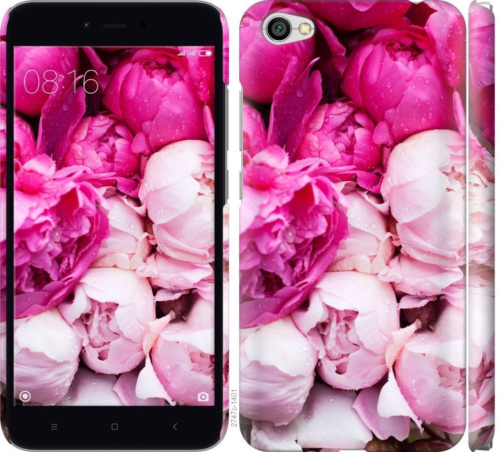 Чехол на Xiaomi Redmi Note 5A Розовые пионы