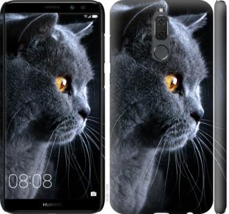 Чехол на Huawei Mate 10 Lite Красивый кот
