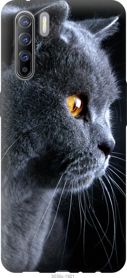 Чехол на Oppo A91 Красивый кот