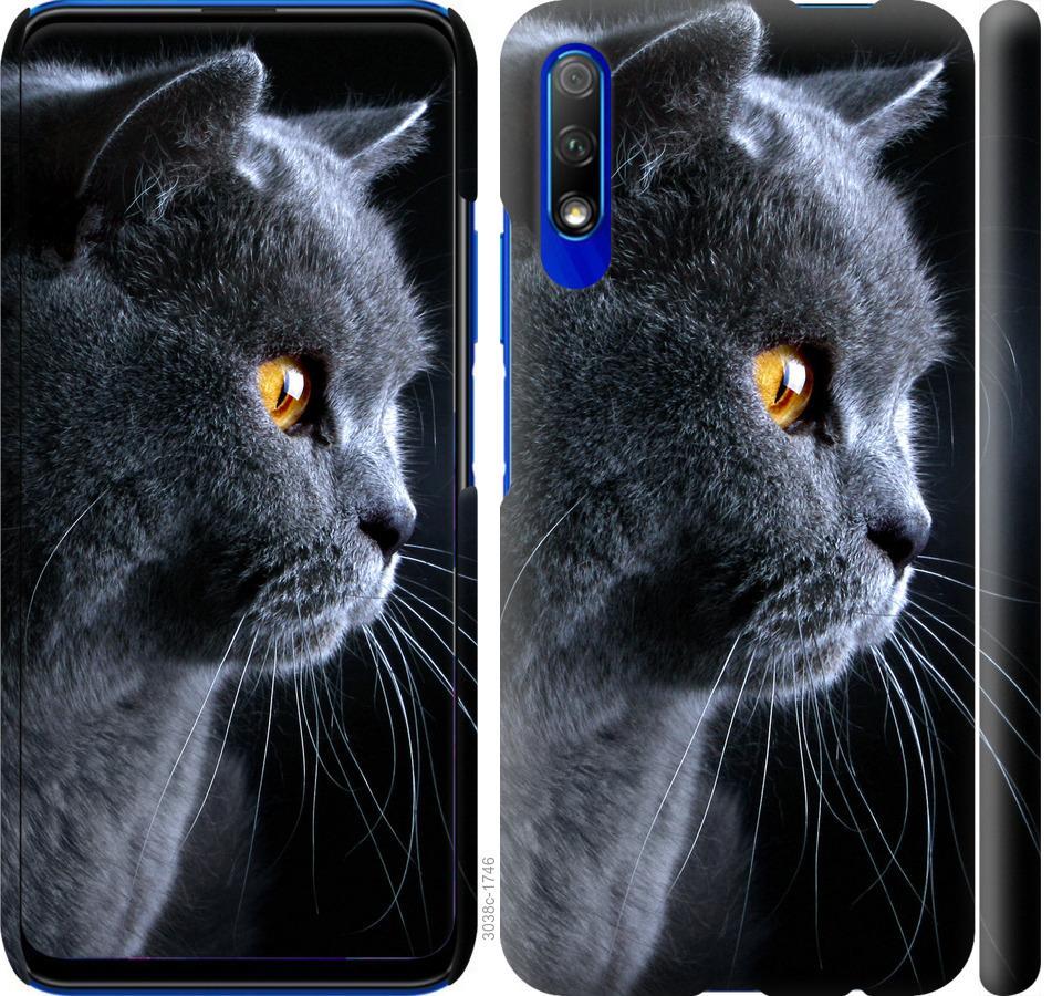 Чехол на Huawei P Smart Pro Красивый кот