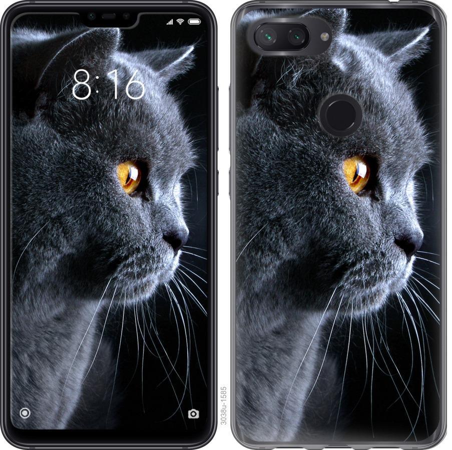 Чехол на Xiaomi Mi 8 Lite Красивый кот