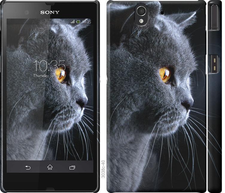Чохол на Sony Xperia Z C6602 Гарний кіт
