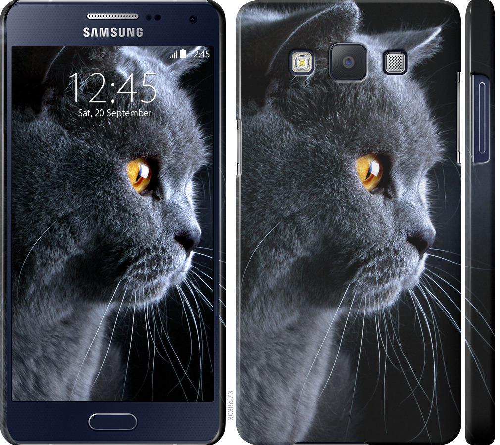Чехол на Samsung Galaxy A5 A500H Красивый кот