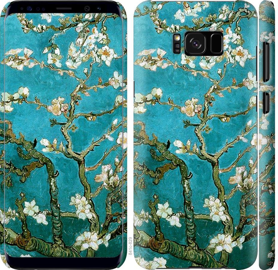 Чехол на Samsung Galaxy S8 Винсент Ван Гог. Сакура
