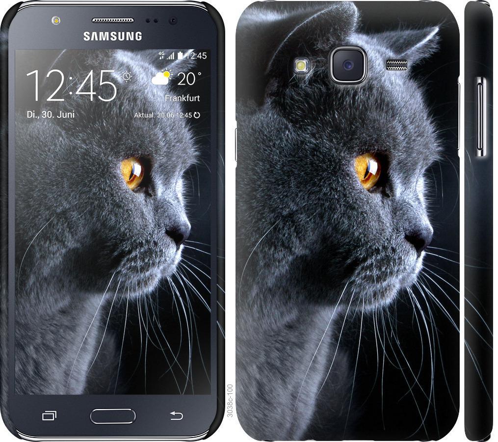 Чехол на Samsung Galaxy J5 (2015) J500H Красивый кот