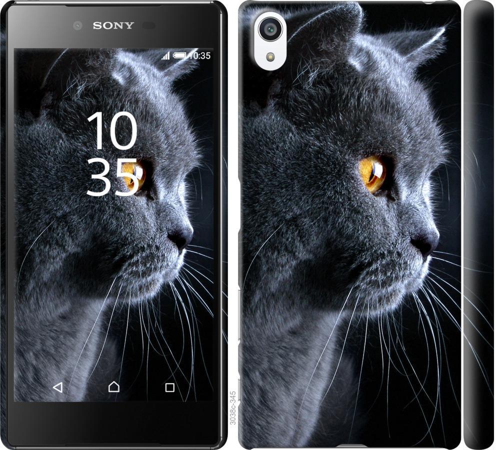 Чехол на Sony Xperia Z5 Premium E6883 Красивый кот