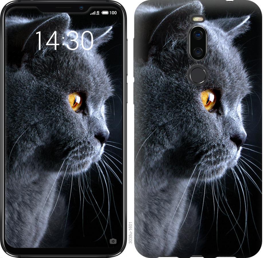 Чехол на Meizu X8 Красивый кот