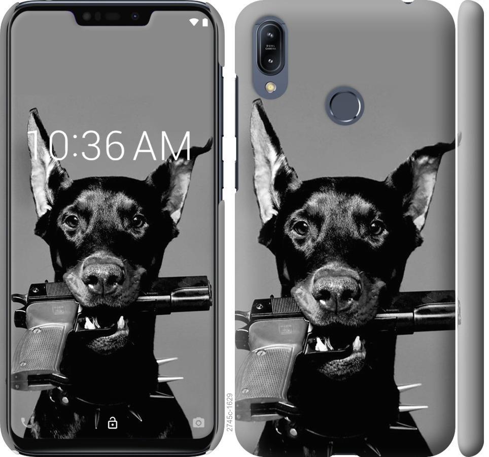 Чехол на Asus Zenfone Max M2 ZB633KL Доберман