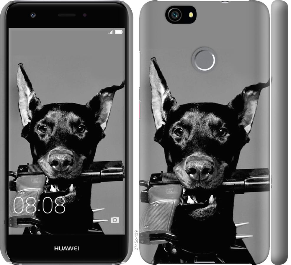 Чехол на Huawei Nova Доберман