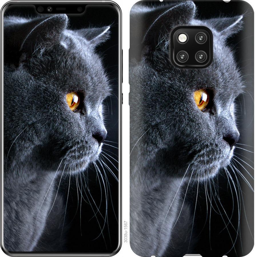 Чехол на Huawei Mate 20 Pro Красивый кот