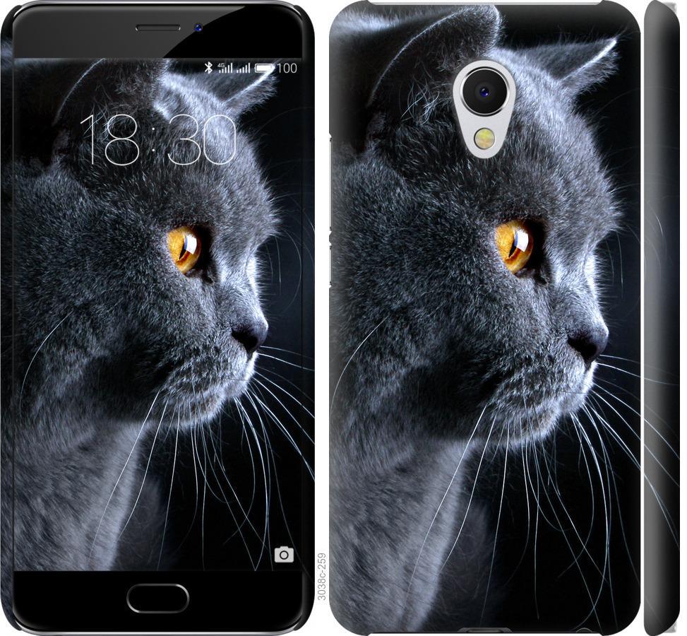 Чехол на Meizu MX6 Красивый кот
