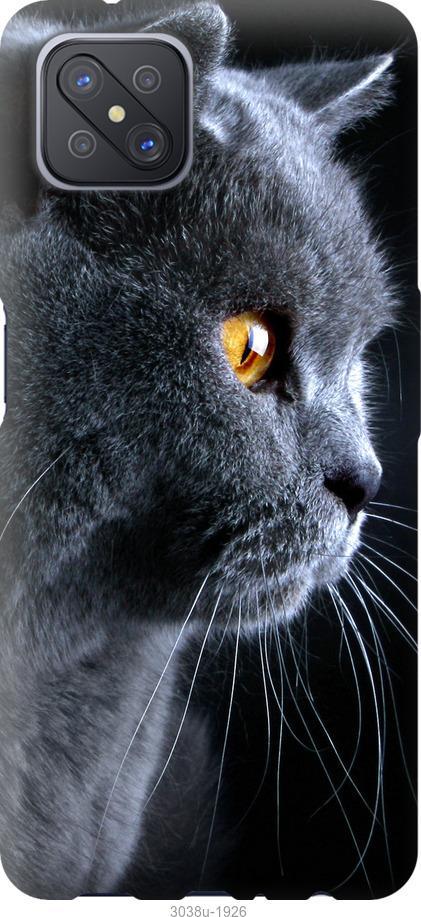 Чехол на Oppo A92S Красивый кот
