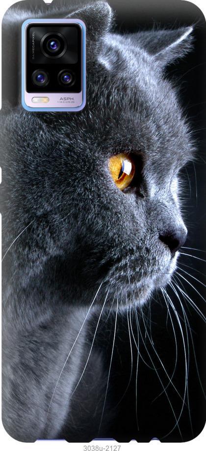 Чехол на Vivo V20 Красивый кот