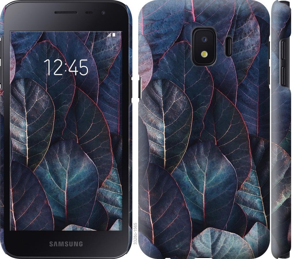 Чехол на Samsung Galaxy J2 Core Листья v3
